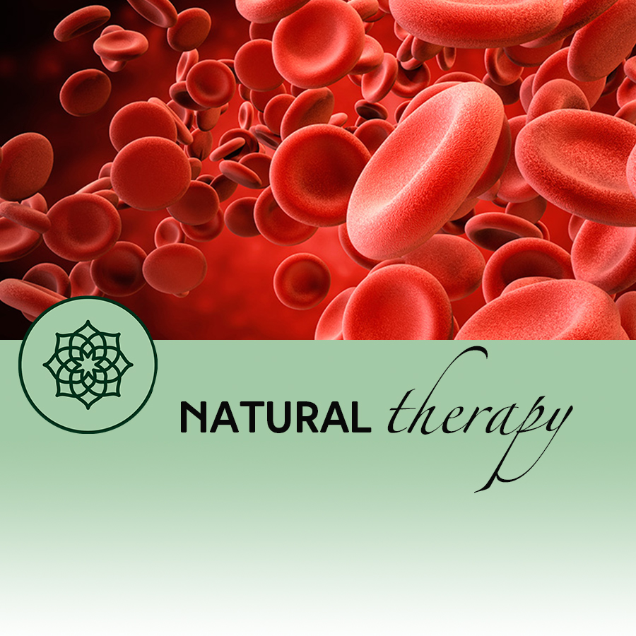 A Window into our Inner World – Live Blood Analysis