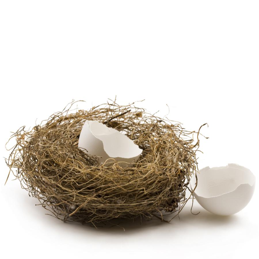 infertility empty nest