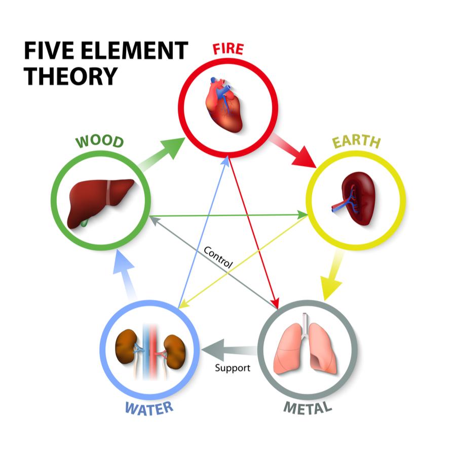 Five element theory TCM