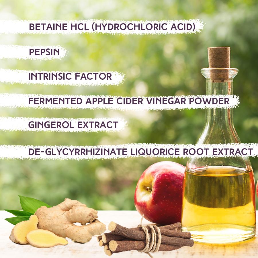 Progast Digestive Support Ingredients