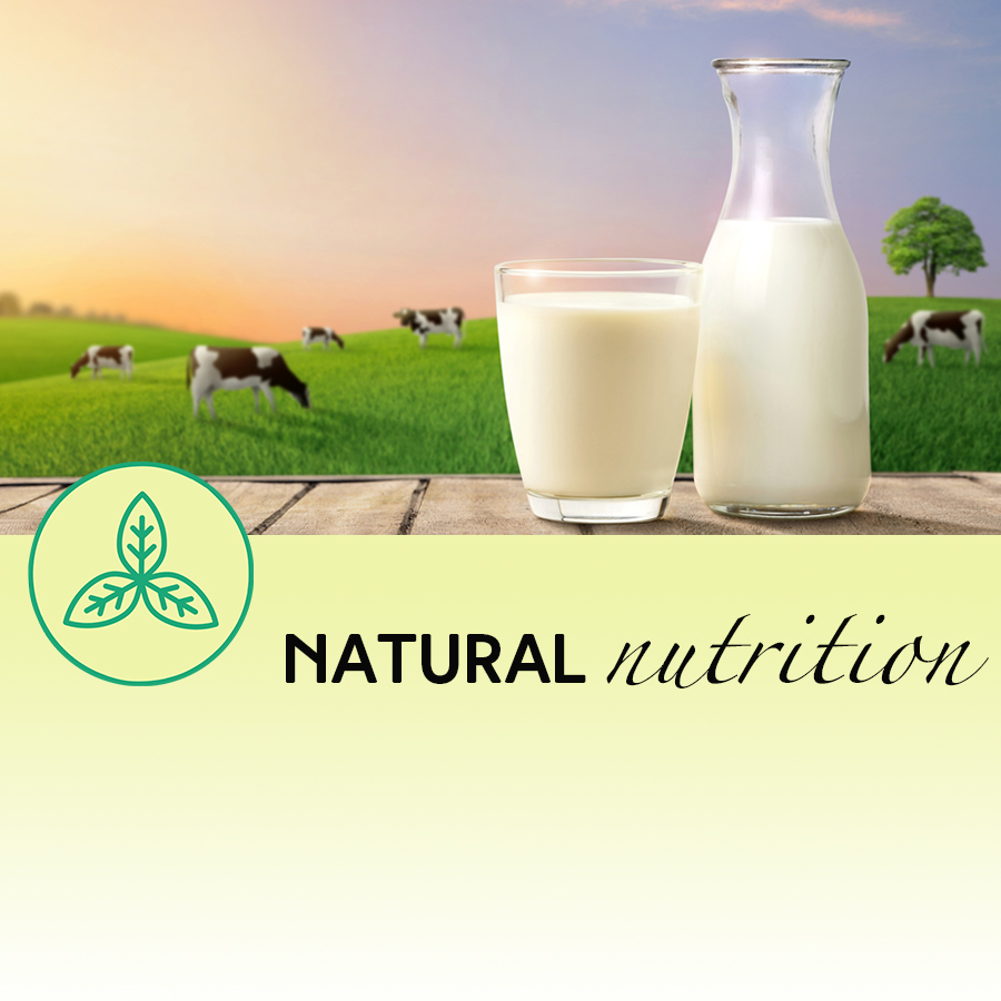 The Udder Truth About Cow's Milk