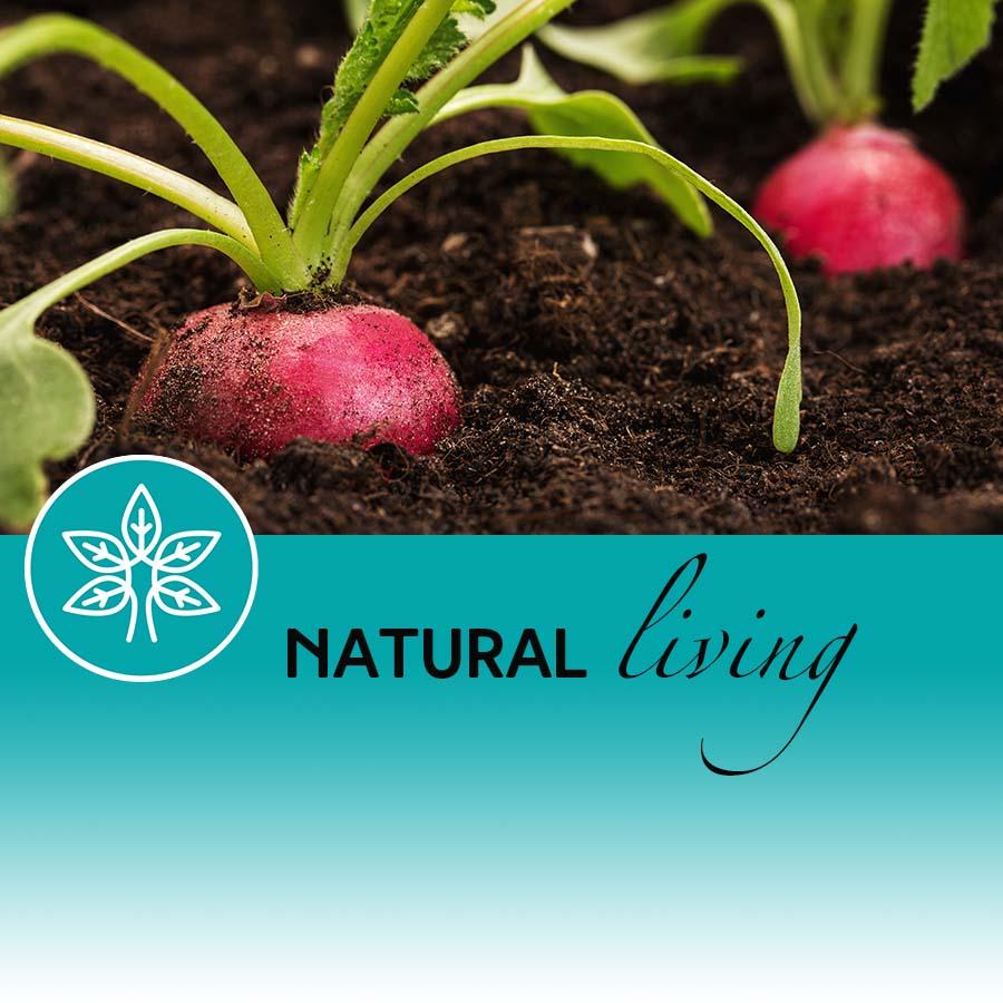 Digging deeper for human health
